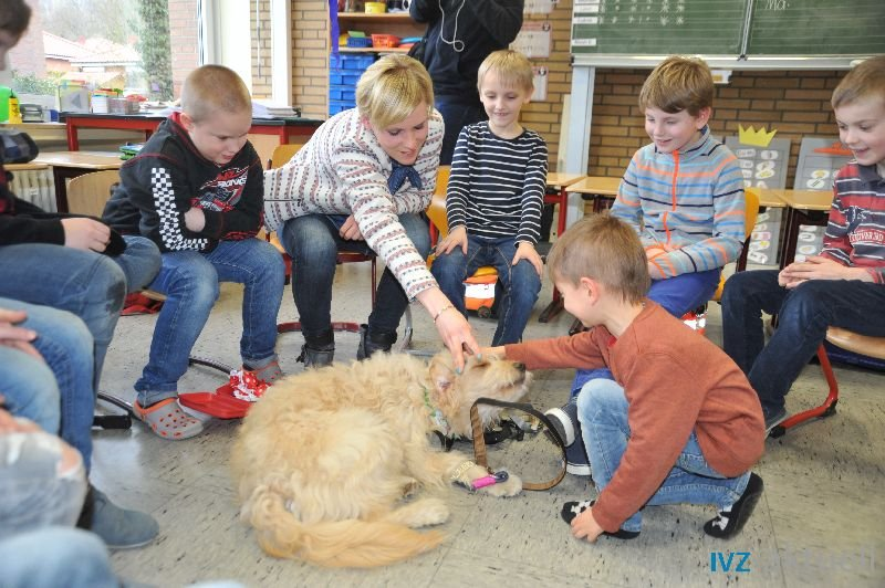 web_2402 Therapiehund Happy (12)