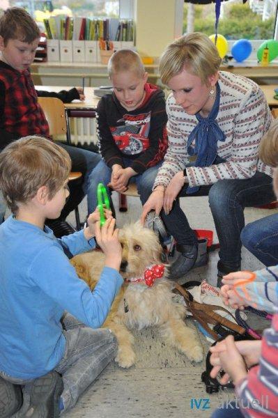 web_2402 Therapiehund Happy (15)