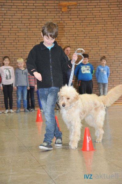 web_2402 Therapiehund Happy (16)