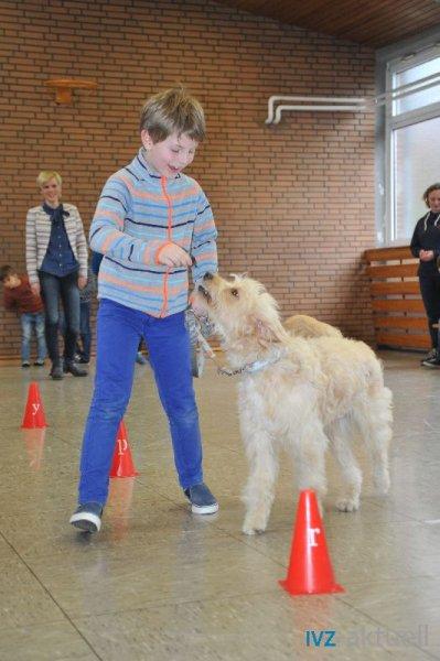 web_2402 Therapiehund Happy (2)