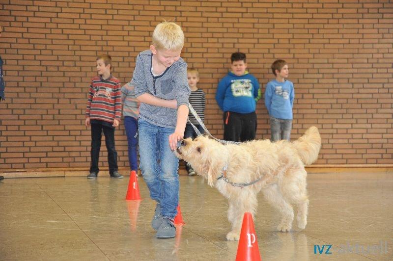 web_2402 Therapiehund Happy (20)